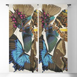 Vintage Butterfly Illustration EA Seguy Papillon Blackout Curtain