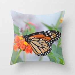 The Monarch Has An Angle Throw Pillow