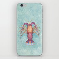 lobster iPhone & iPod Skins featuring lobster by Marcela Siegert