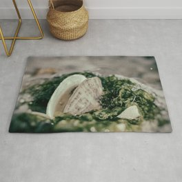 Seaweed and Shells on the Beach Nature / Coastal Photograph Rug