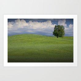 Lone Tree on Hill of Green Grass Art Print
