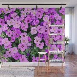 Blue pillow garden plant purple Wall Mural
