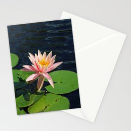 The Kindling Heart I Stationery Cards