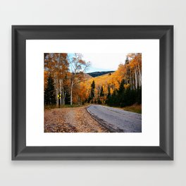 Aspen 3 Framed Art Print