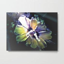 Sun Rays On The Hibiscus Flower Metal Print