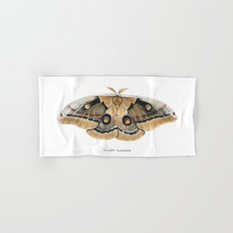 Oculea Silkmoth (Antheraea oculea) Hand & Bath Towel