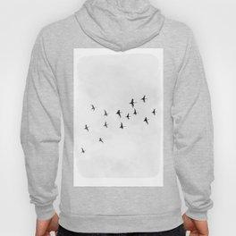 Flock of Birds Hoody
