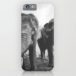 Elephant Buds iPhone Case
