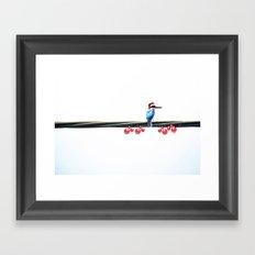 Tis The Season - Kingfisher Framed Art Print