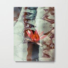 Lotus 01 Tas Metal Print