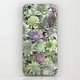 Desert Flower II iPhone Skin