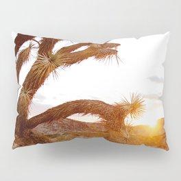 Joshua Tree at Sunrise  Pillow Sham