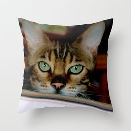 Just A Bit Nose-y Throw Pillow