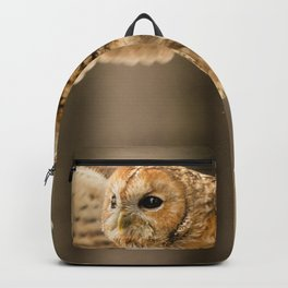 Tawny Owl in Flight Backpack