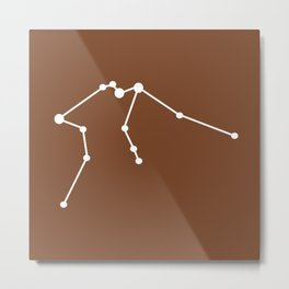 Aquarius (White & Brown) Metal Print