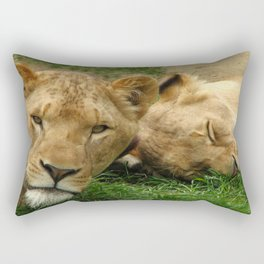 Asian Lions (Panthera leo persica) Rectangular Pillow