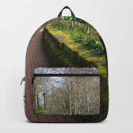 Road By The River Dee Backpack