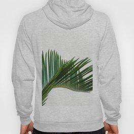 Minimalist Palm Tree Leaf Tropical Zen Photo Houseplant Hoody