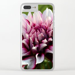 In The Summertime Clear iPhone Case