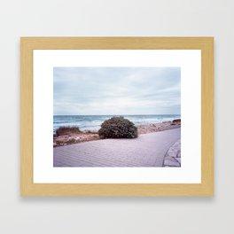 Lonely bush Framed Art Print