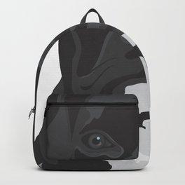 The Black & White Boxer Backpack