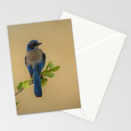 Bluebird of my Happy Space Stationery Cards