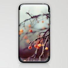 Marzipan iPhone & iPod Skin