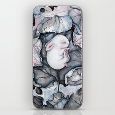 Wintersleep iPhone & iPod Skin