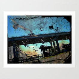 Pigeons on the South Causeway Art Print