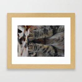 Little Paws Framed Art Print