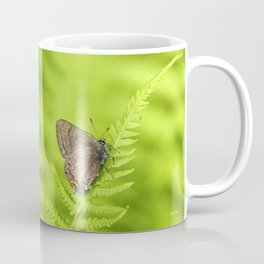 Banded Hairstreak Butterfly Coffee Mug