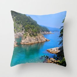 Carving Out Wonders Throw Pillow