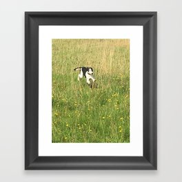 Happiness is running wild and free, and not letting your feet touch the ground! Framed Art Print