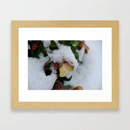 I promise you Spring Framed Art Print
