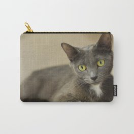 Comfortable Kitty Carry-All Pouch