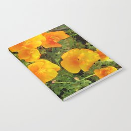 Poppies Watercolor Notebook