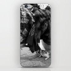 homeless cat iPhone & iPod Skin