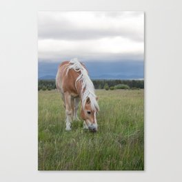 Blonde Beauty Canvas Print
