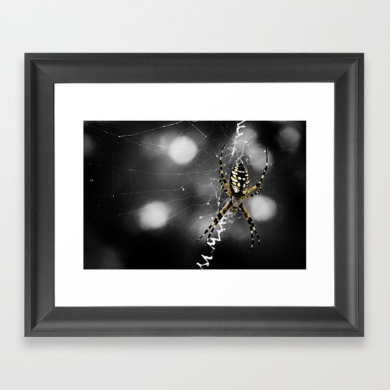 Banana Spider Macro Color Pop Framed Art Print