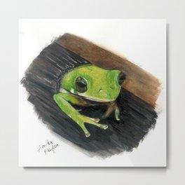 Peekaboo Tree Frog Metal Print