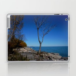 So Near, But Yet So Far #1 (Chicago Northerly Island Collection) Laptop & iPad Skin
