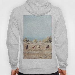 Oregon Wilderness Horses Hoody