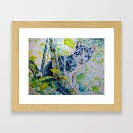 Albus (*Koinonia*) Framed Art Print