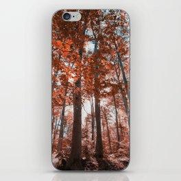 woodland dreams iPhone Skin