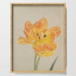 Vintage Tulip Orange Serving Tray