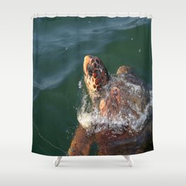 Loggerhead Turtle (Caretta Caretta) Breaking The Sea Surface Shower Curtain