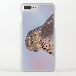 Watercolor Falcon Clear iPhone Case