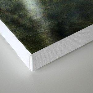 Chaenomeles 'Jane Taudevin' Canvas Print