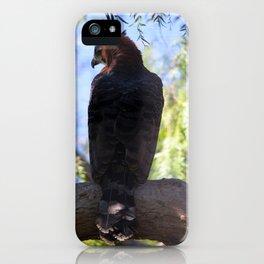 Over Shoulder Glances iPhone Case