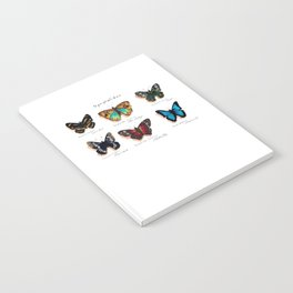Nymphalidae butterflies Notebook